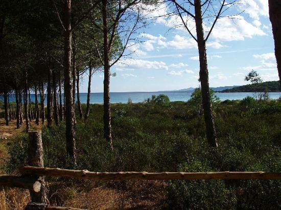 Lu Impostu Beach: Cala Bandinchi