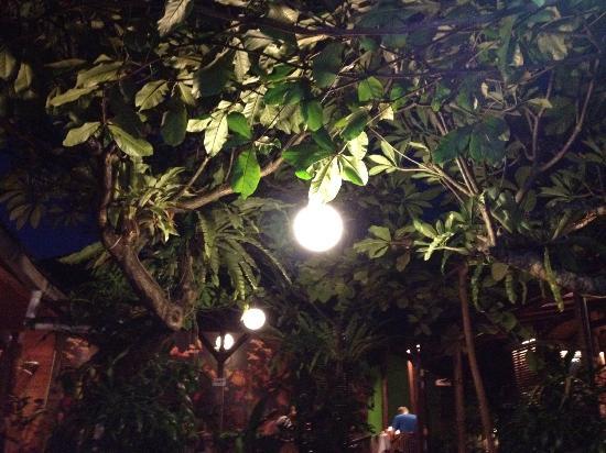 Rib Restaurant : Pleasant atmosphere
