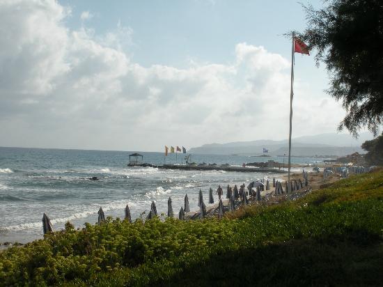 Ariadne Beach Hotel 사진