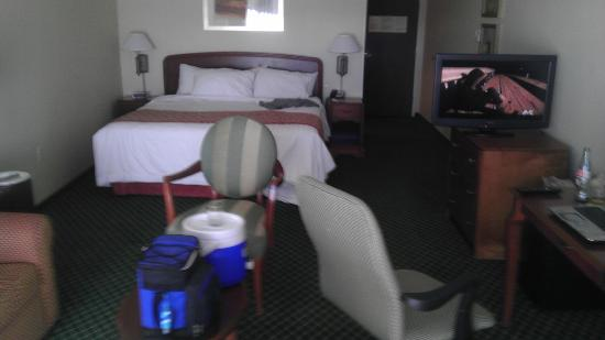 Courtyard Sacramento Folsom: Nice size rooms with a GREAT comfortable bed.
