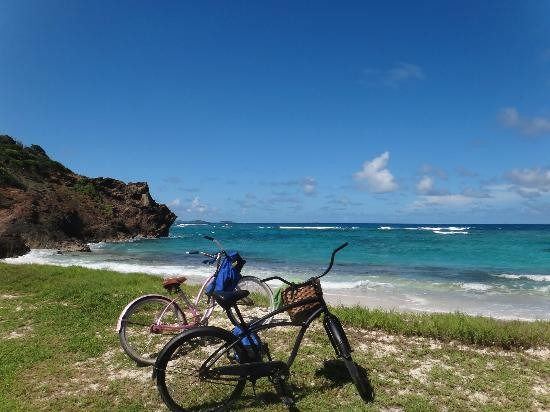 Palm Island Resort & Spa: You can ride bicycles all over the island to find the perfect snorkle spot