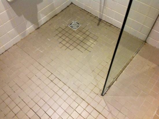 Hotel 55: horrible shower