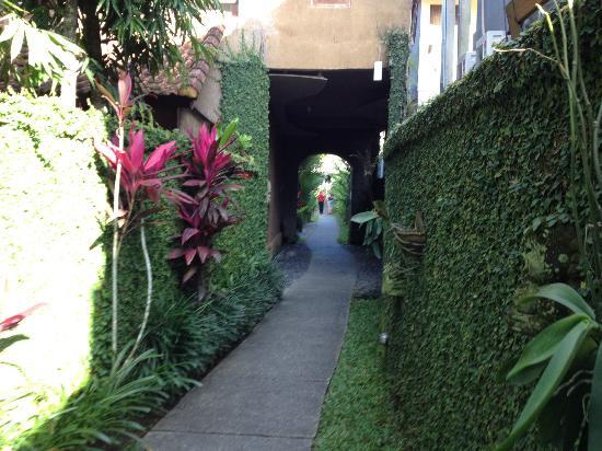 Tunjung Mas Bungalows: Hotel grounds