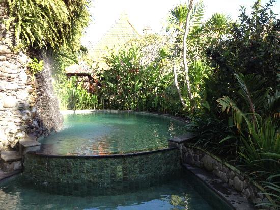 Tunjung Mas Bungalows and Resort: Pool