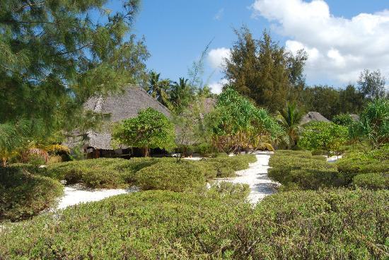 Hakuna Majiwe Beach Lodge: I bungalow
