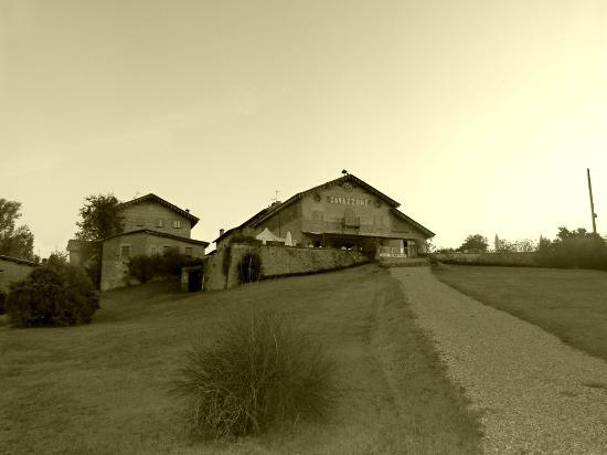 Agriturismo Cavazzone: back down the walking paths and bushland