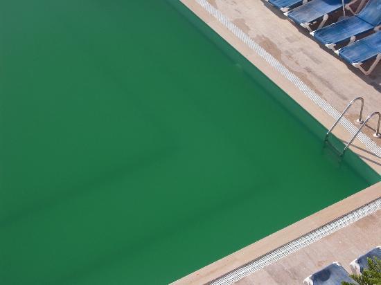 Truva Family Club: dirty green pool