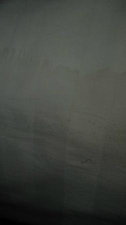 Hyatt Regency Indian Wells Resort & Spa: Stained bed sheets....gross!