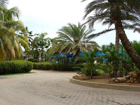 Laguna Mar: hotel laguna mar 