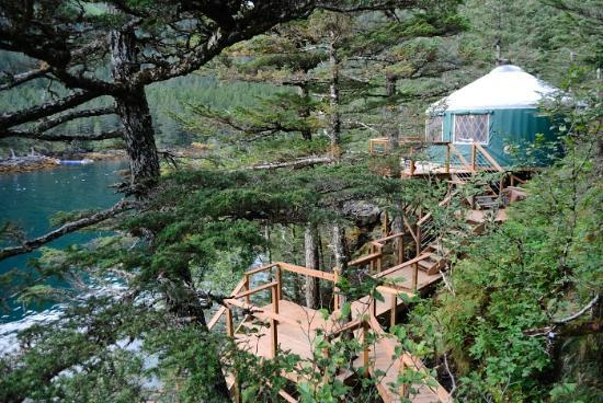 Pleasing Puffin Cabin Picture Of Orca Island Cabins Seward Download Free Architecture Designs Scobabritishbridgeorg