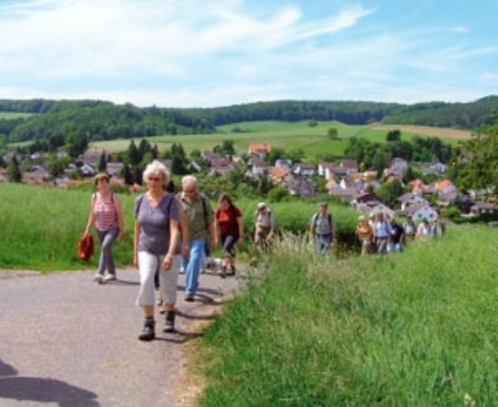 Hotel Gasthof Zur Krone Odenwald-Sterne-Hotel : Wandergruppe Wanderwege