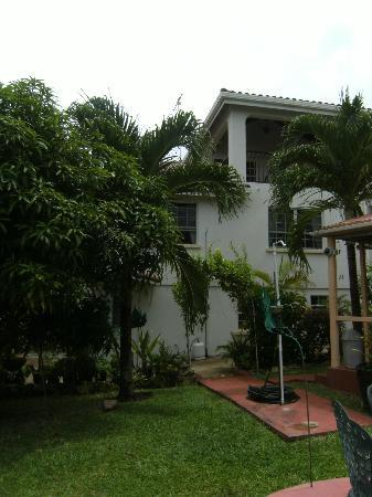 Palm Paradise Guest House + 2 Apartments: Grounds