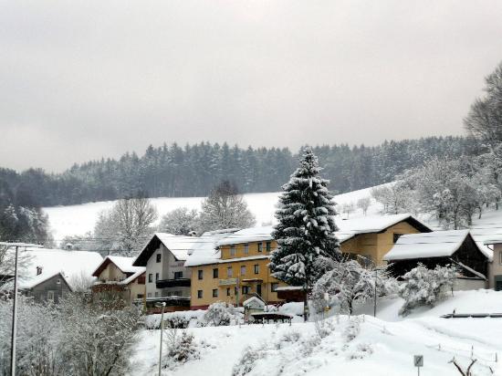 Hotel Gasthof Zur Krone Odenwald-Sterne-Hotel: Hotel im Winter