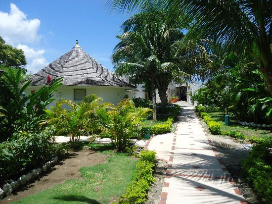 Royal Decameron Club Caribbean: garden