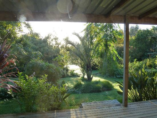 Wharepuke Subtropical Accommodation: gardens from cabin