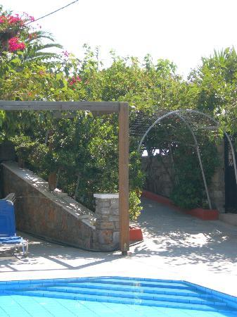 Sarikampos Beach Hotel: pool area
