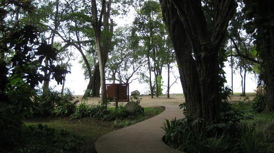 Hotel Bosque del Mar Playa Hermosa: Walkway to the beach