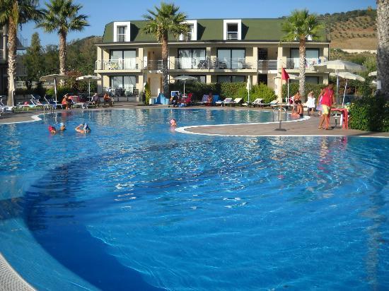 Marina di Nocera Terinese, Italie : la bellissima piscina
