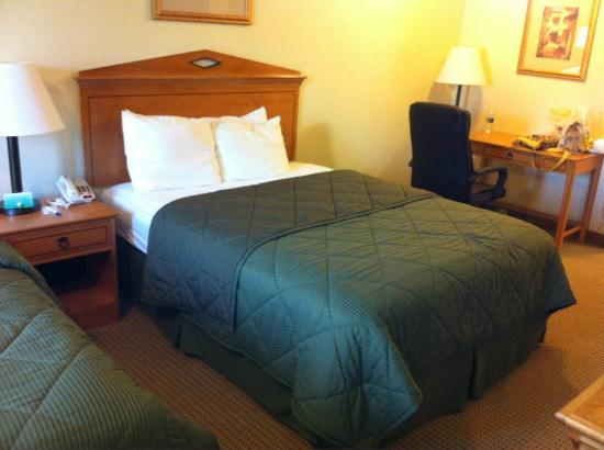 Comfort Inn Lancaster County : Queen Bed