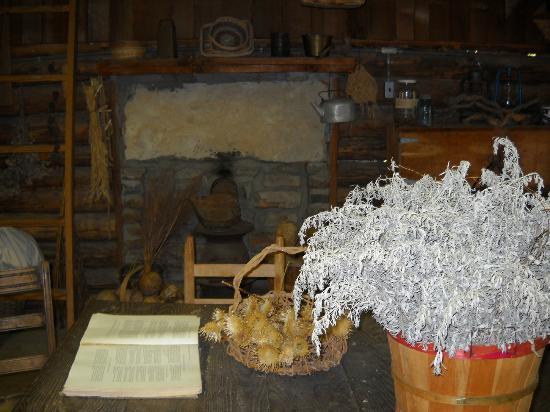 Ozark Folk Center State Park: Herb shop