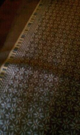 Motel 6 Melrose Park, IL: uneven carpet in hallway