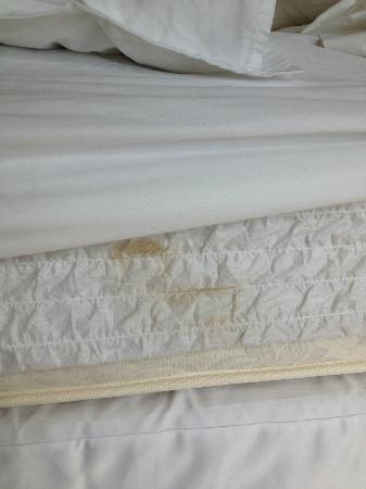 Sheraton Toronto Airport Hotel & Conference Centre: the beds were old or dirty? but no bad bug :-)