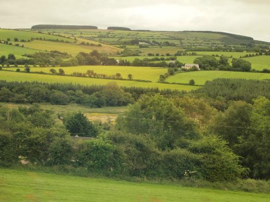 eCoach Shore Tours: Countryside from Cobh to Kinsdale