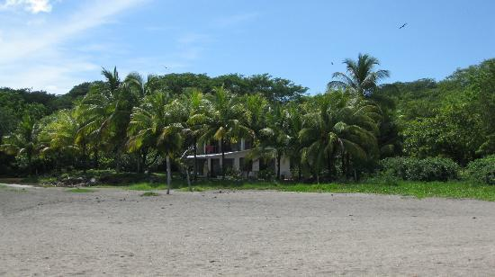Playa Hermosa: Palms in front of a private residence on the beach
