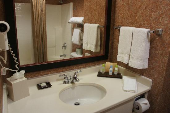 Larkspur Landing South San Francisco: Bathroom