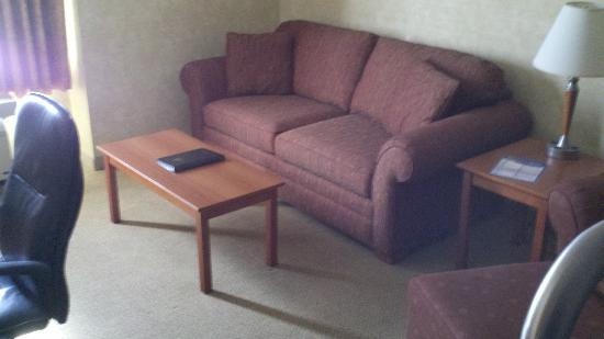 Best Western Plus Rose City Suites: Sitting area.