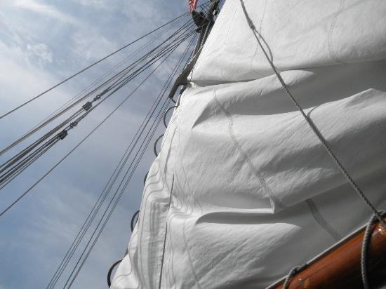 Mystic Whaler Cruises: You can help hoist the mast