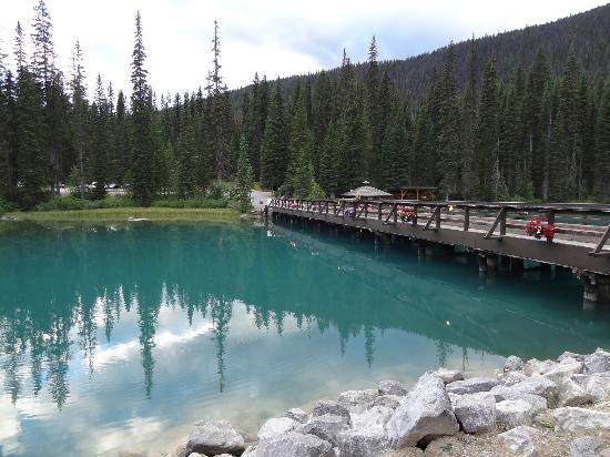 Cilantro On The Lake : bridge from patio
