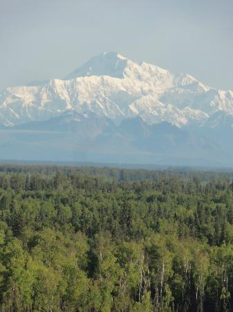 Denali Overlook Inn : My McKinley