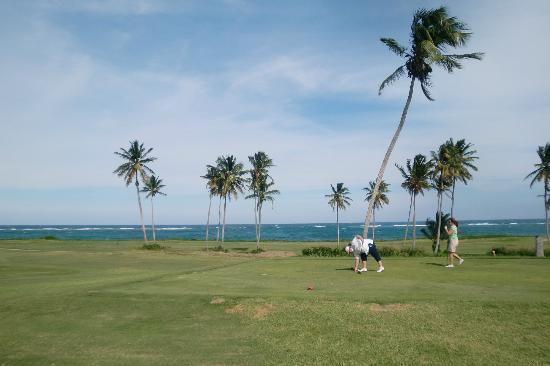 Royal St. Kitts Golf Club: Leichte Briese - Schönes Spiel