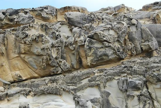 Salt Point State Park: Beautiful tafoni formations