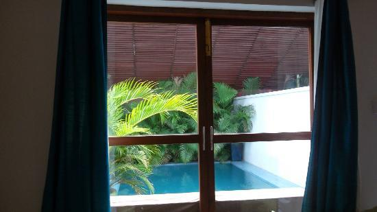 Blue Lime: View from bedroom to the plunge pool area