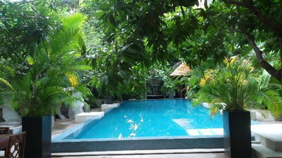 Blue Lime: Pool area