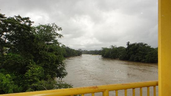 Laguna Miramar : Rio Jataté en la Democracia