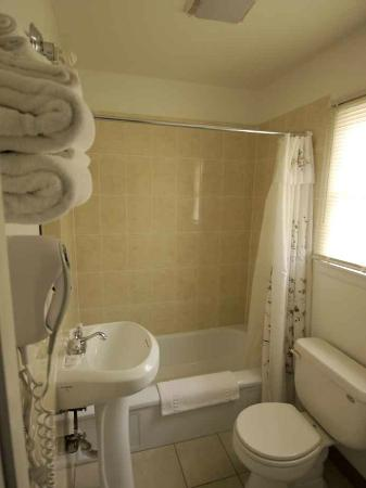 Grand Junction Palomino Inn: Bathroom - small but functional