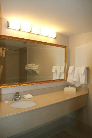 La Quinta Inn & Suites Madison American Center : Spacious bathroom