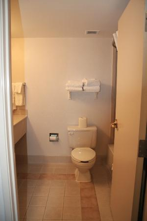 La Quinta Inn & Suites Madison American Center: Spacious bathroom