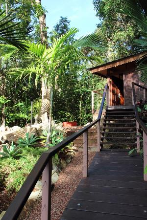 Cairns Reef 'n Rainforest B & B: 2012 Sep