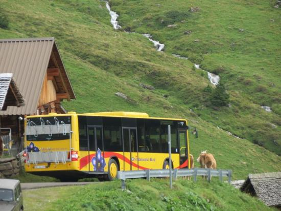 Grindelwald, Suiza: Bus Ride