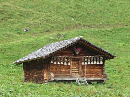 Grindelwald, Schweiz: Bussalp