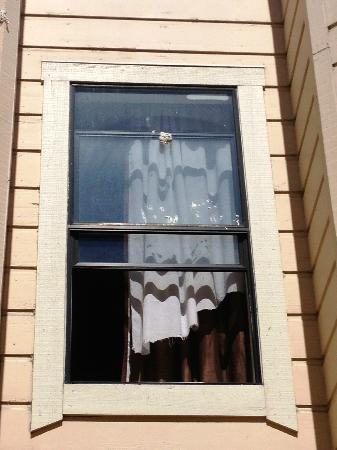 Europa Hotel: No screen, ripped curtains, crap on the windows, overlooking a courtyard filled with junk