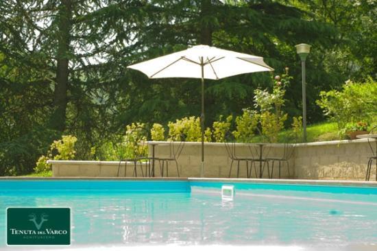 Agriturismo Tenuta del Varco: La piscina