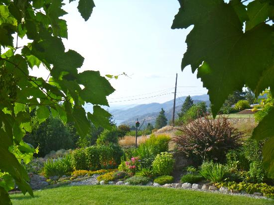 Copper Goose B & B: another lovely garden view