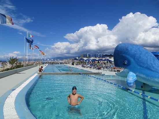 Hotel President: The Pool at the Belena 2000 Beach Club