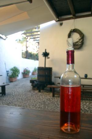 Gavalas Winery: Una de las catas