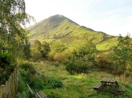 Styan Bew B&B : Hartsop Dodd from garden of Styan Bew